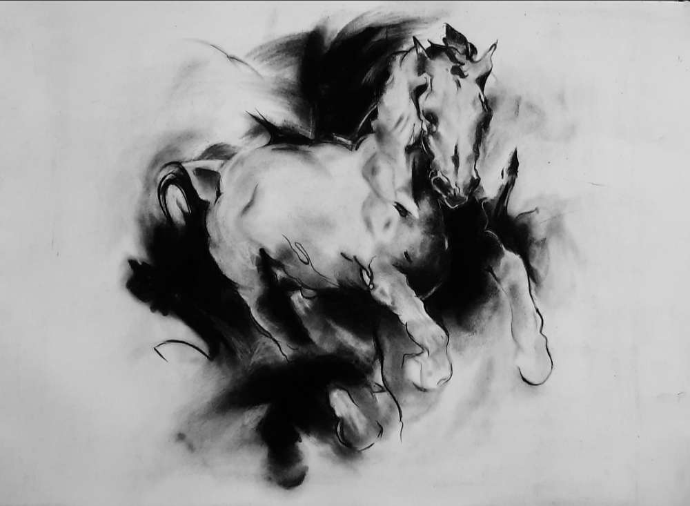 Horse Charcoal Painting